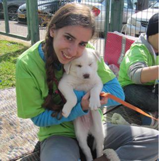 מתנדבת עם כלב שחור ולבן בידים