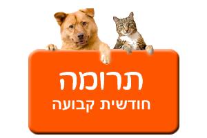 כפתור תרומה חודשית קבועה בכתום עם כלב וחתול
