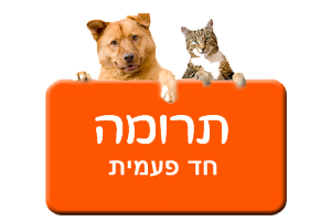 כפתור תרומה חד פעמית בכתום עם כלב וחתול
